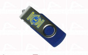 Lions usb key custom