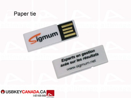 Custom mini USB Key white
