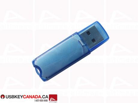Custom blue usb key
