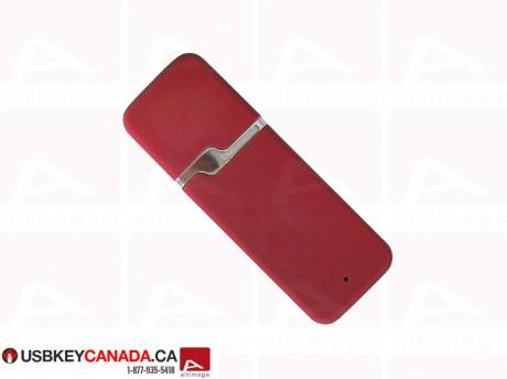 Custom basic usb key red